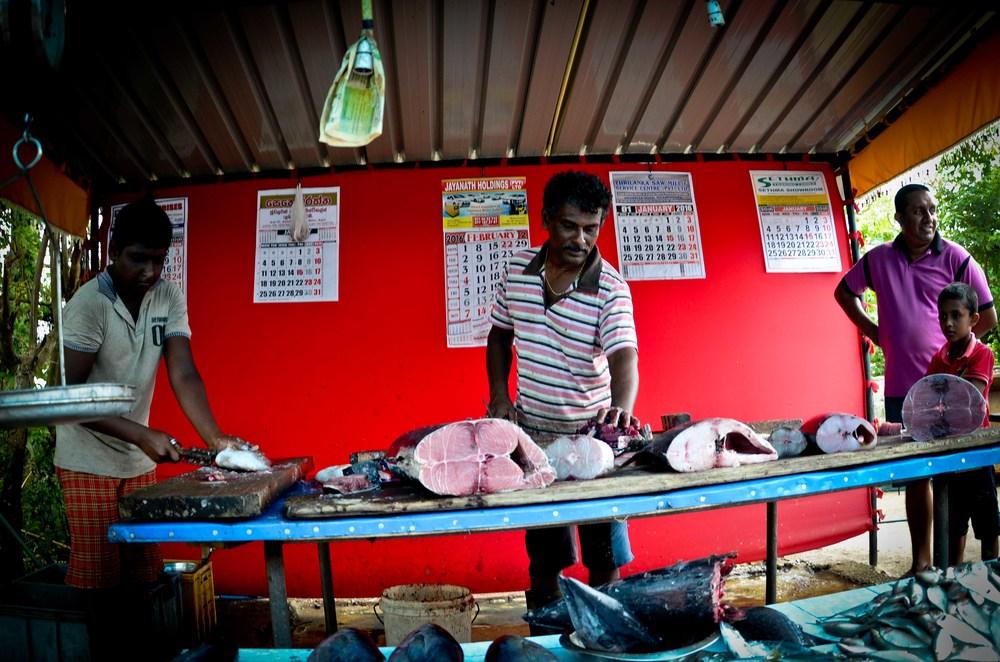 srilanka-30.jpg