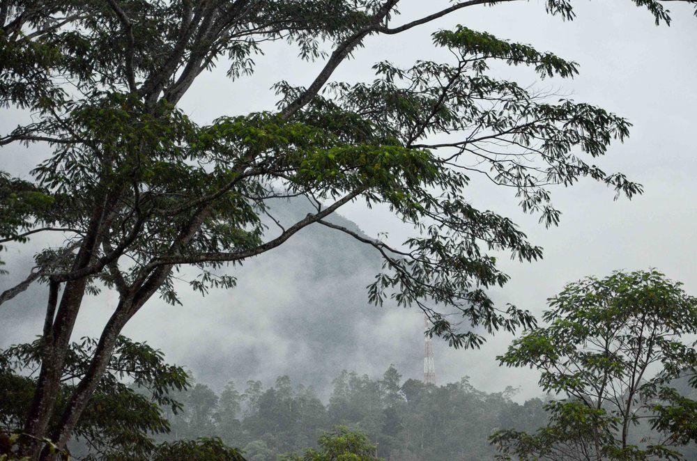 srilanka-42.jpg