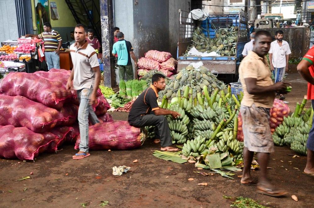 srilanka-59.jpg
