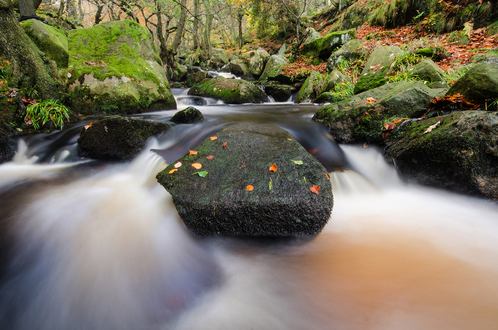 Padley Gorge, Peak District National, UK.jpg