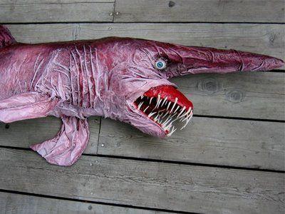 Goblin Shark 1.jpg