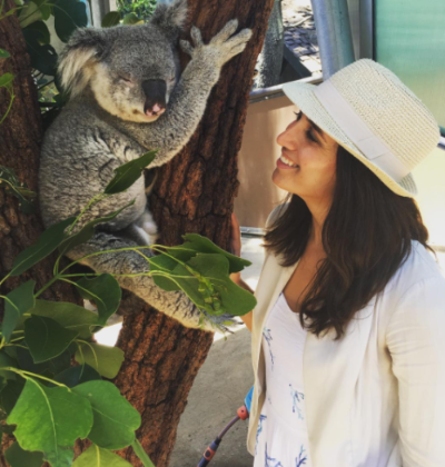 Obligatory koala picture.