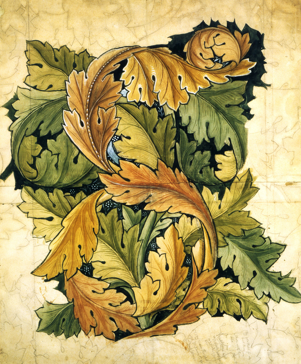circ.297-1955_acanthus_1000px.jpg