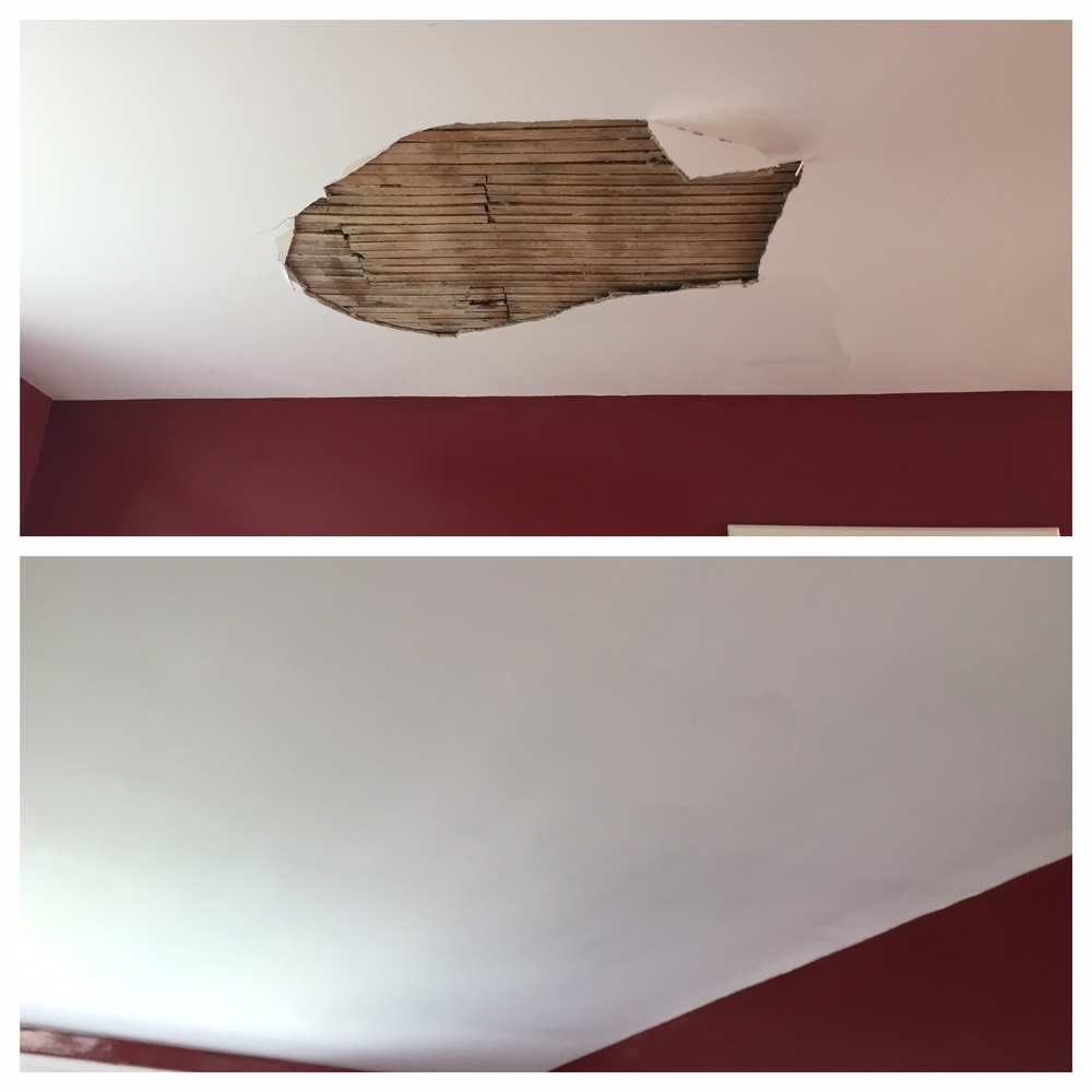 Glen Willis Ceiling Plaster Repair