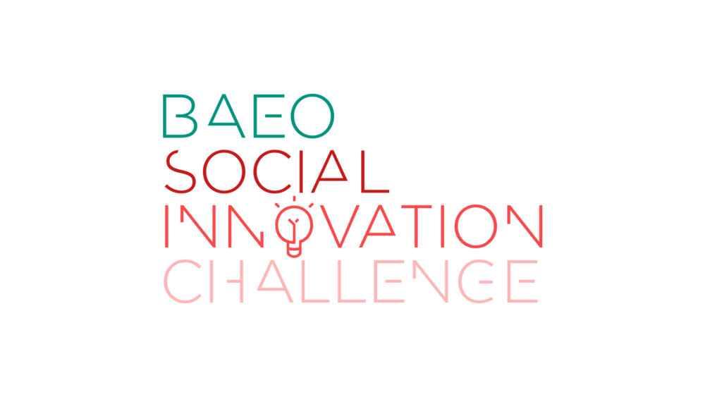 BAEO | Logo and Website