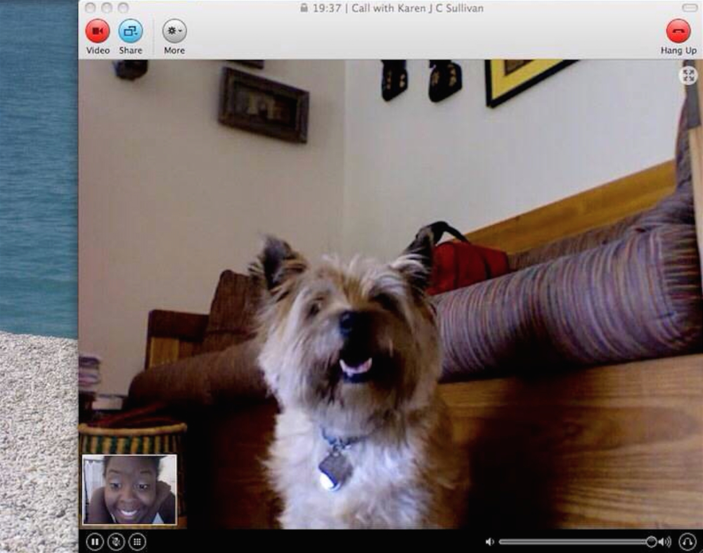 Can dogs affect our oxytocin levels through Skype too?