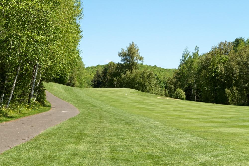 GY Summer Golf.jpg