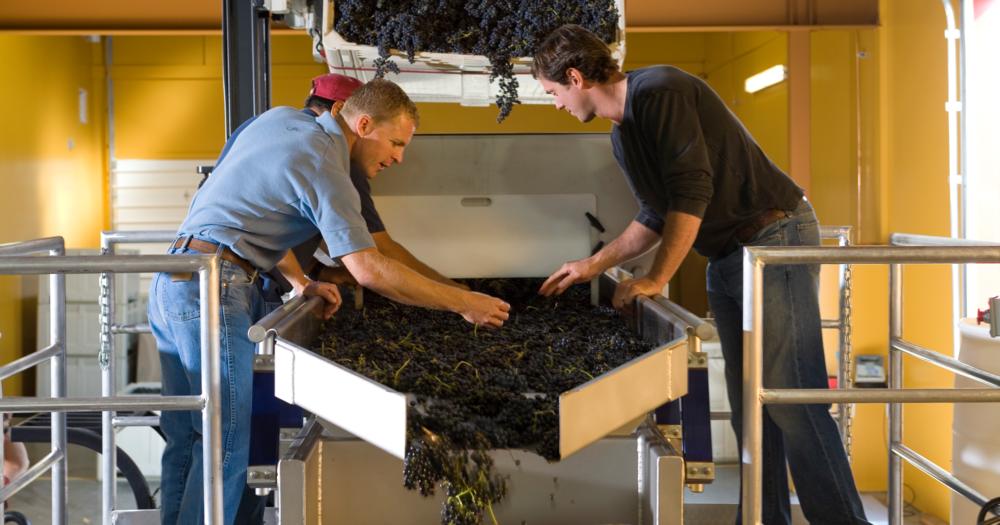 Doubleback Winery - Establishing a new chapter