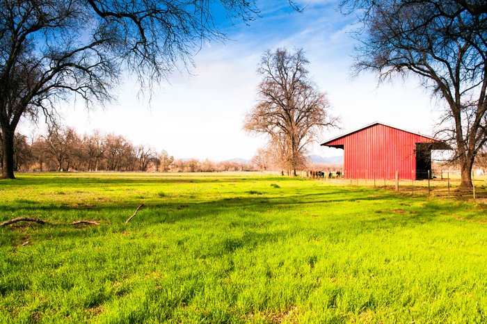 The Cheyenne Ranch | Redding Bridal Show