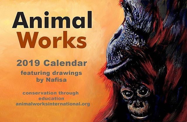 Our 2019 Calendar is available for pre-order now! ✨ It features beautiful artworks of endangered wildlife by our founder, @nafisa.naomi, with all proceeds going to our conservation projects 🐵🐘🦁🦏🐯 And for a limited time, you'll get one of our free AW Elephant Christmas Cards when you purchase. Get yours via the link in our bio or here: animalworksinternational.org/shop