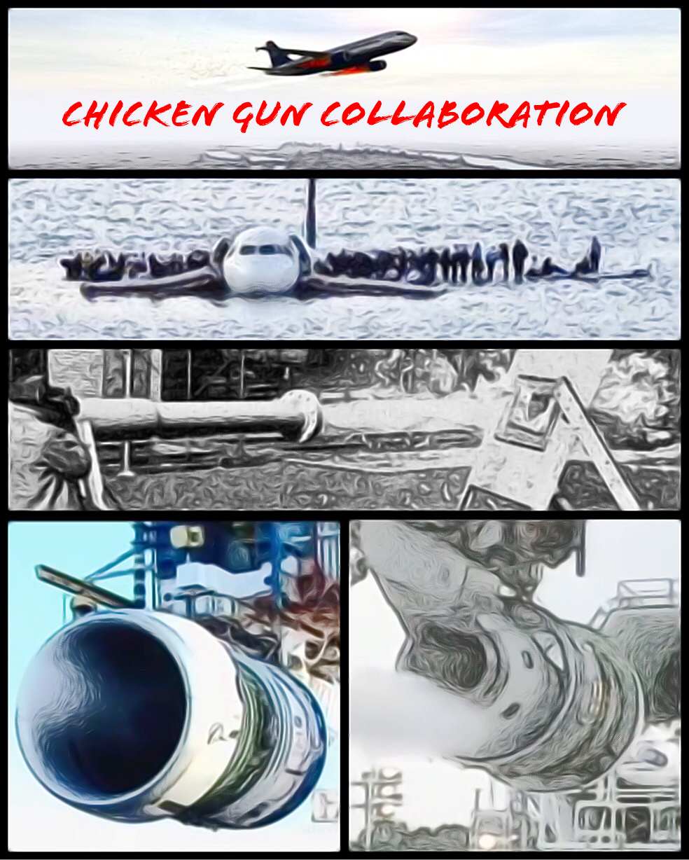 Chicken Gun Collaboration