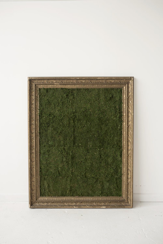 Mossy Frame