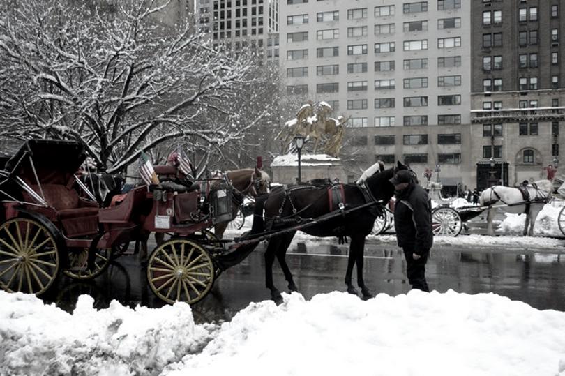 blanc_new+york