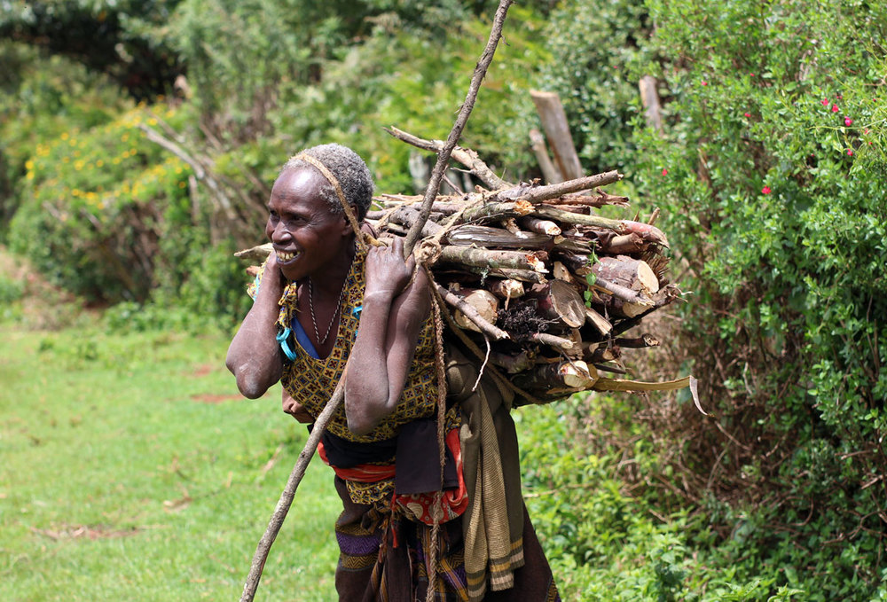 This is a common sight in Kenya - people walk to the forests to collect fire wood.  They use the wood to cook food.