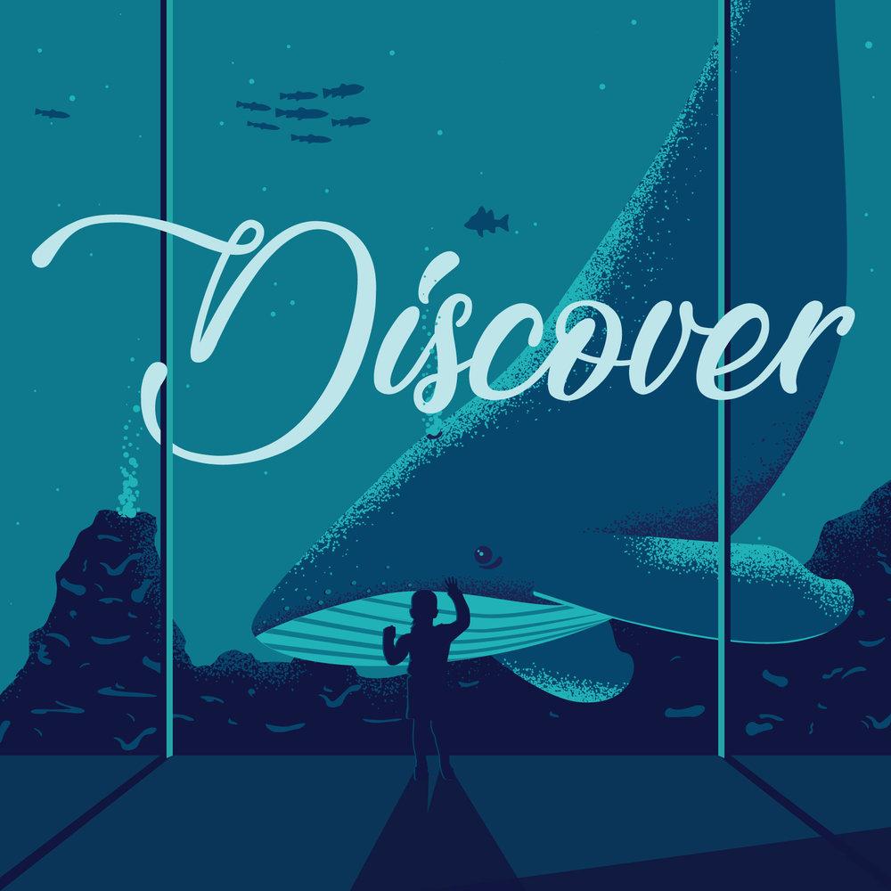 WhaleGirl_discover.jpg