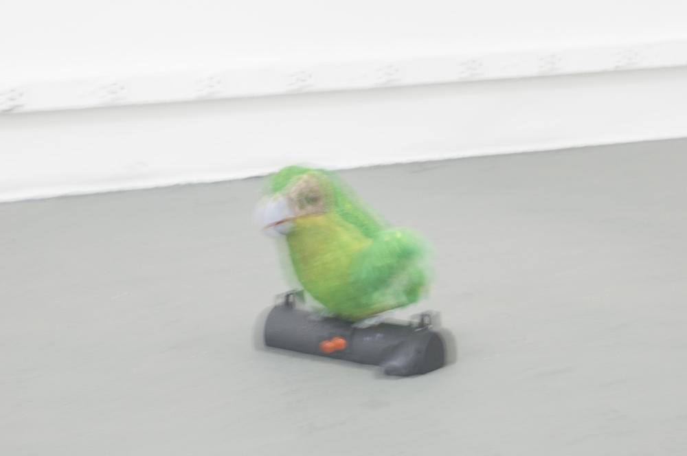 kakapolight.jpg