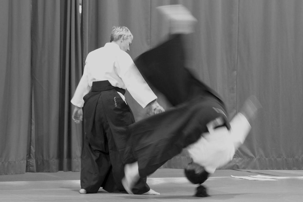 aikido_wurf.jpg