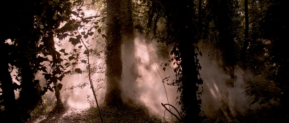 DSR - The Figure appears through the mist in the twisted forest-41.jpg