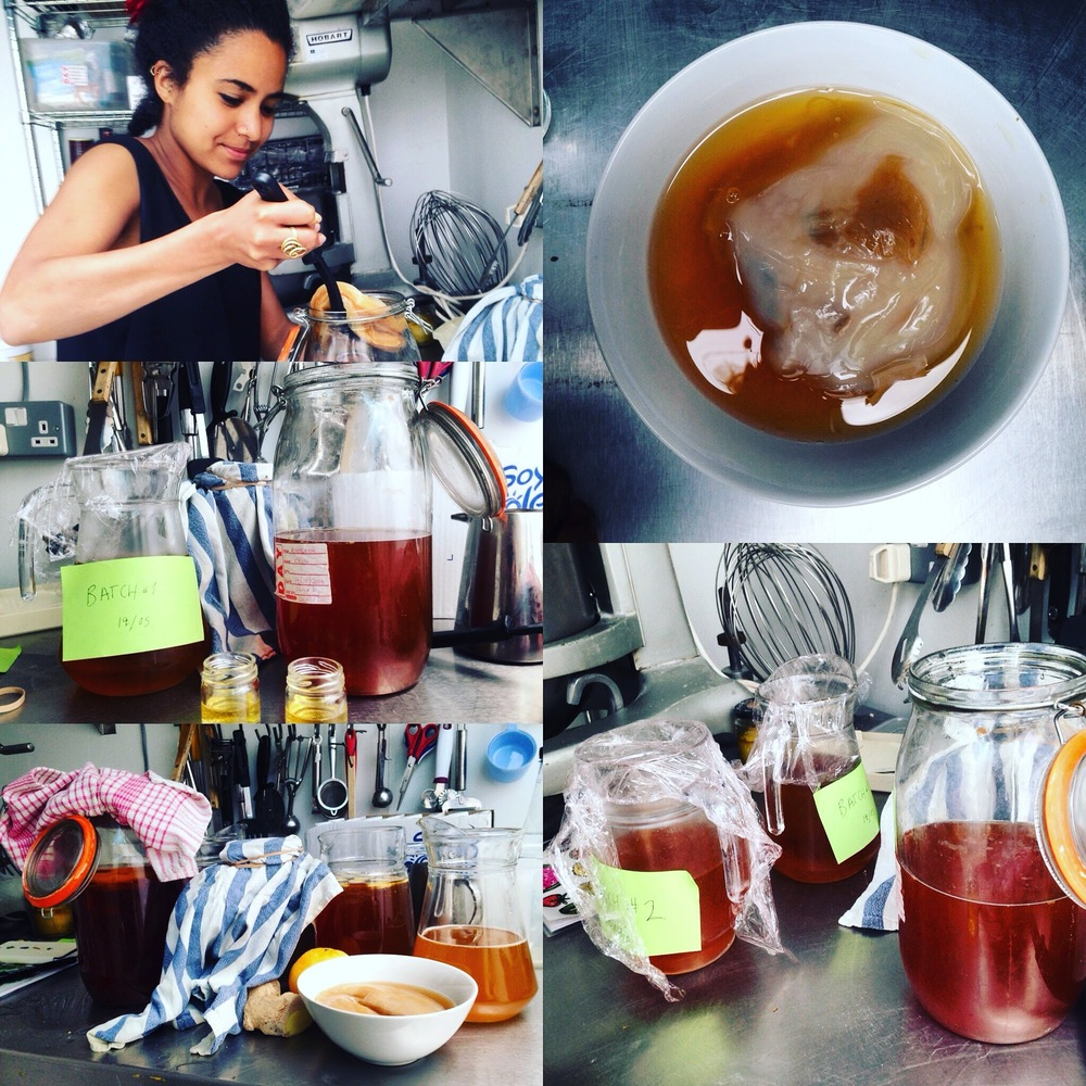 Kombucha Making with Vero