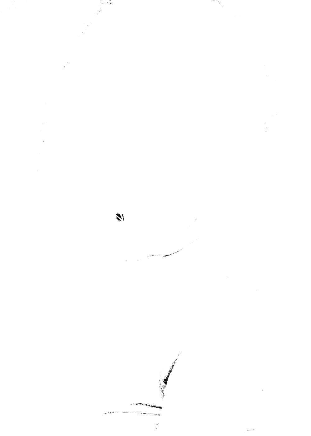 20161218-DSC_9474.png