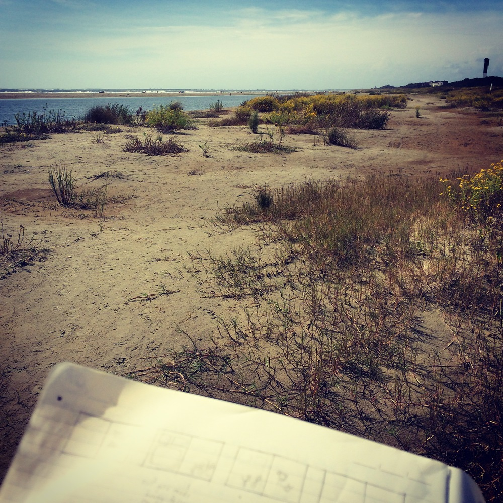 Working on a picture book concept at the Sullivan's Island shore.