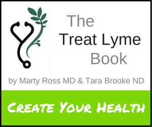 Learn more about The Treat Lyme Book.