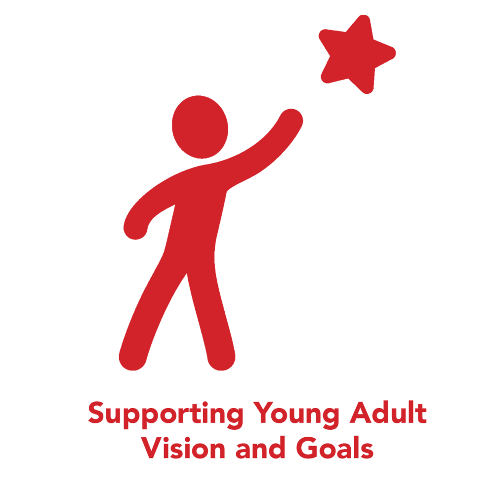 supporting-young-adult-vision-goals.png