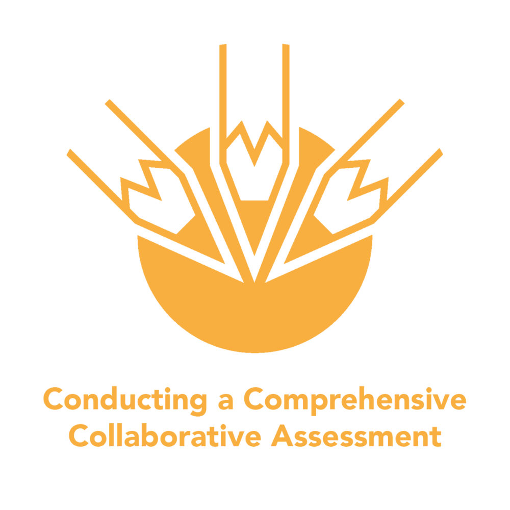 comprehensive-collaborative-assessment .png