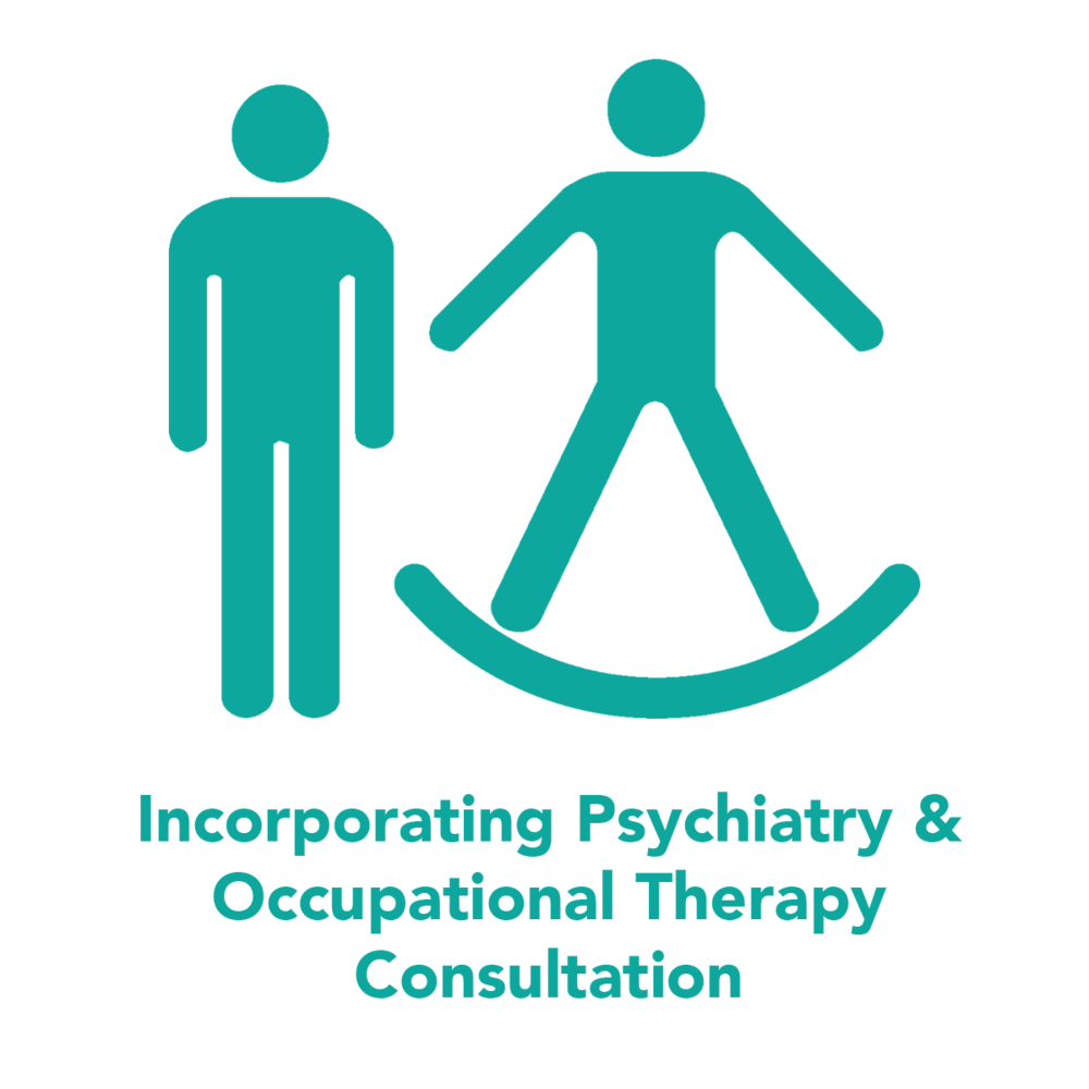 psychiatry-occupational-therapy-consultation.png