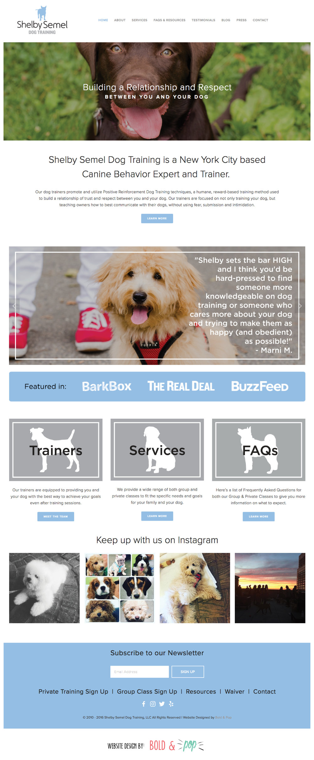 Bold & Pop : Shelby Semel Dog Training Website Design