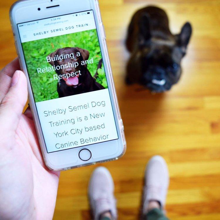 Shelby Semel <br> Dog Training <br> Website Design
