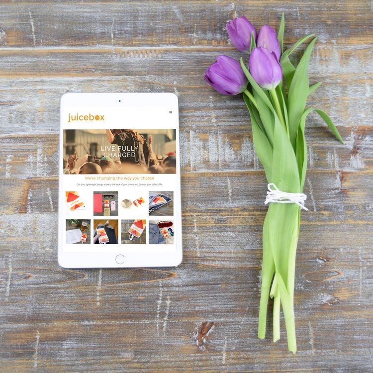 Juicebox <br> Parallax Website <br>Design