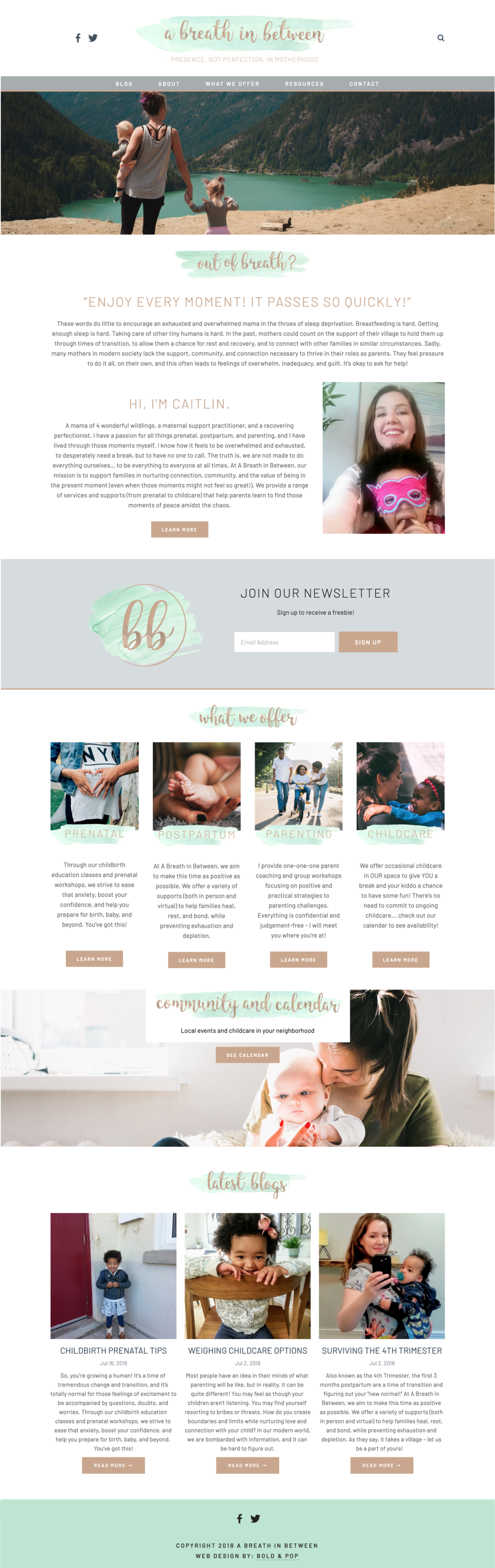 Mom Blogger & Maternal Practitioner Website Design