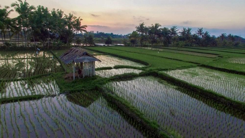 Bali - by Balidroneproduction
