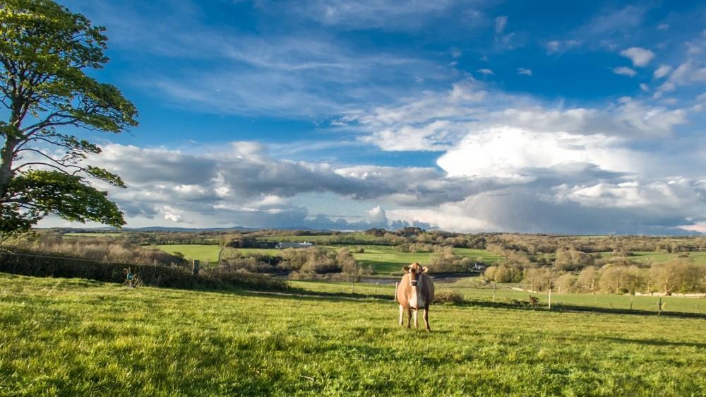 Lawrenny, Wales -ByMrForegoneConclusion