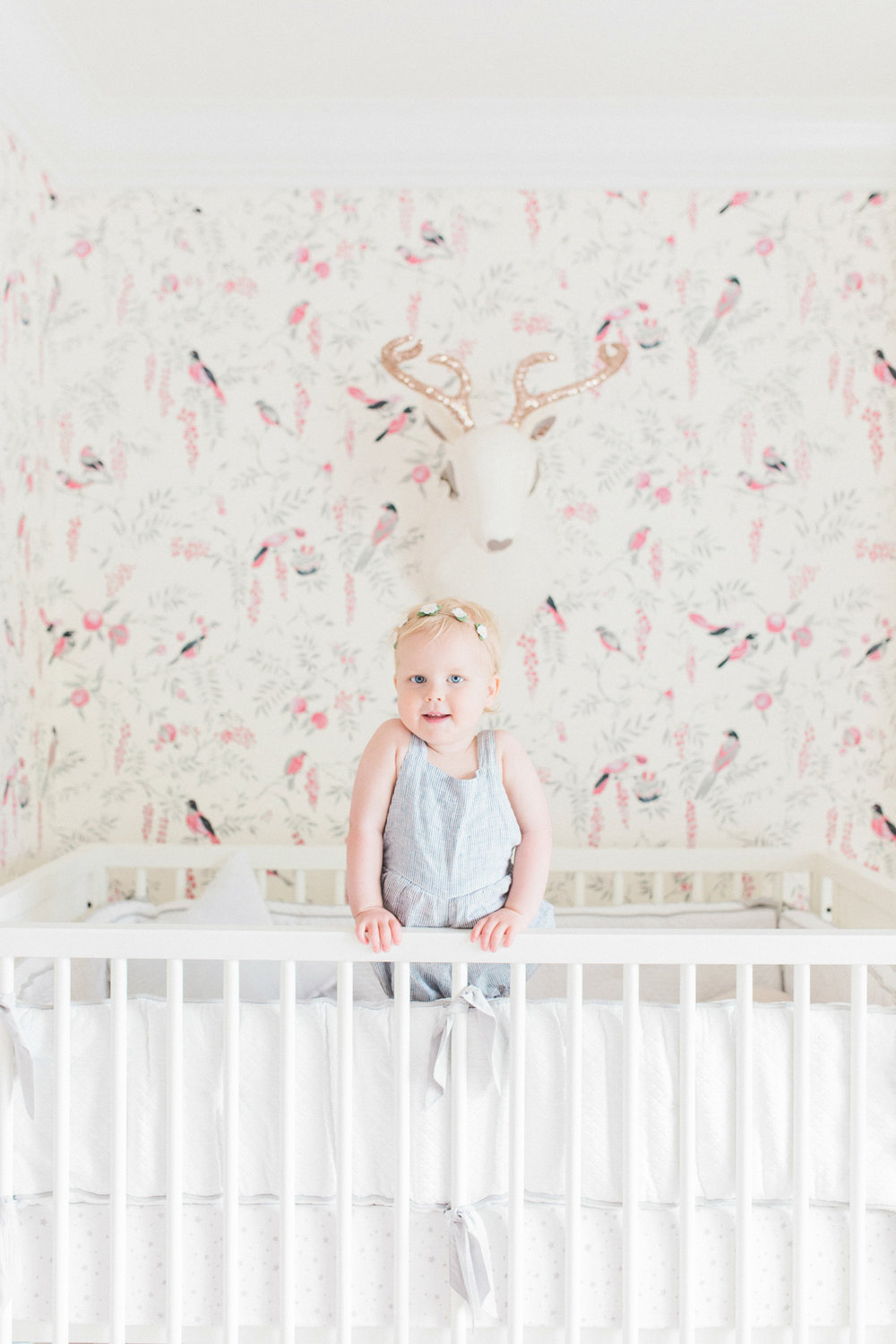 Project Nursery - Juniper's Vintagey Bird Wallpaper Nursery