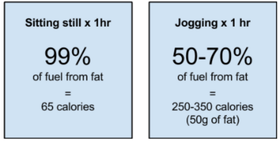 Figure 1 – Calories of fat burned from sitting still and jogging