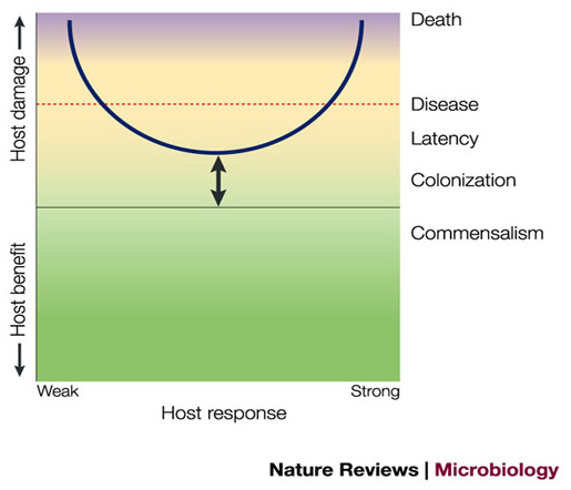 A graphic presentation of the damage-response framework from Casadevall, A. & Pirofski, L. A. Nature Rev. Microbiol. 1, 17–24 (2003).