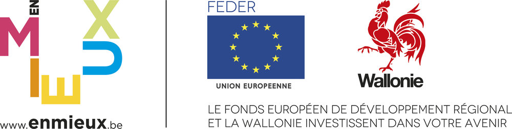 logo_FEDER+wallonie.jpg