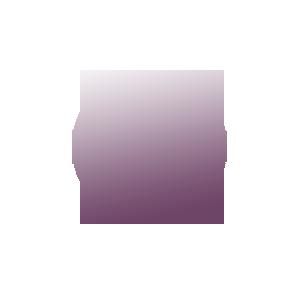 BTS-sponsor-logo-square-2016-soulsinaction.png