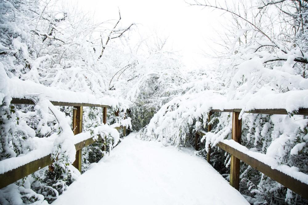 snow-19.jpg