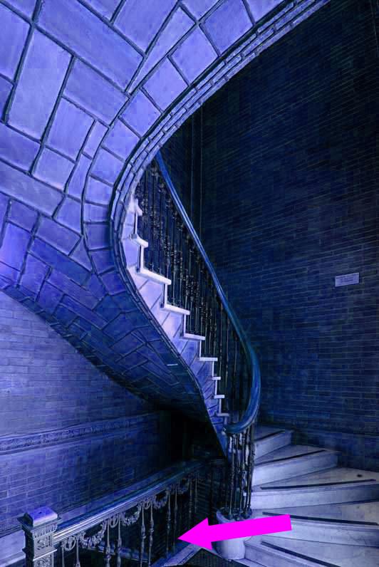 006--vaulted-stair-at-St-Paul-Chapel-Columbia-University_Michael-Freeman_jpg_600x796_q85 copy.jpg