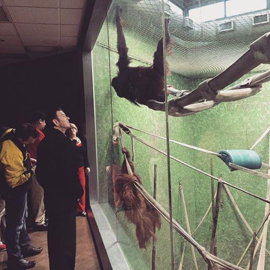 zoo 6.jpg