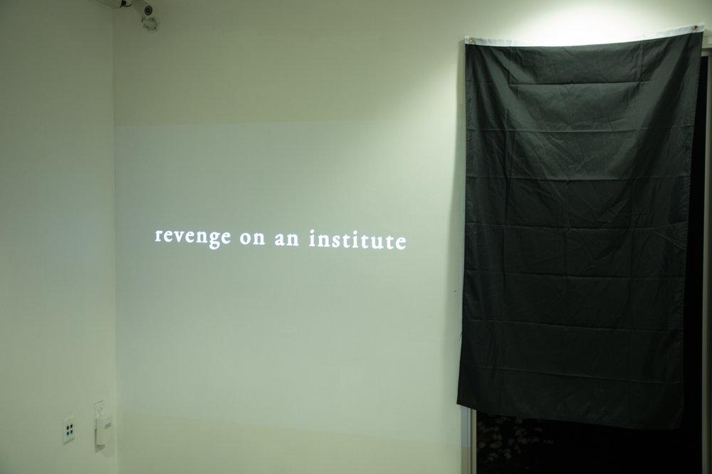 Revenge on An Institute