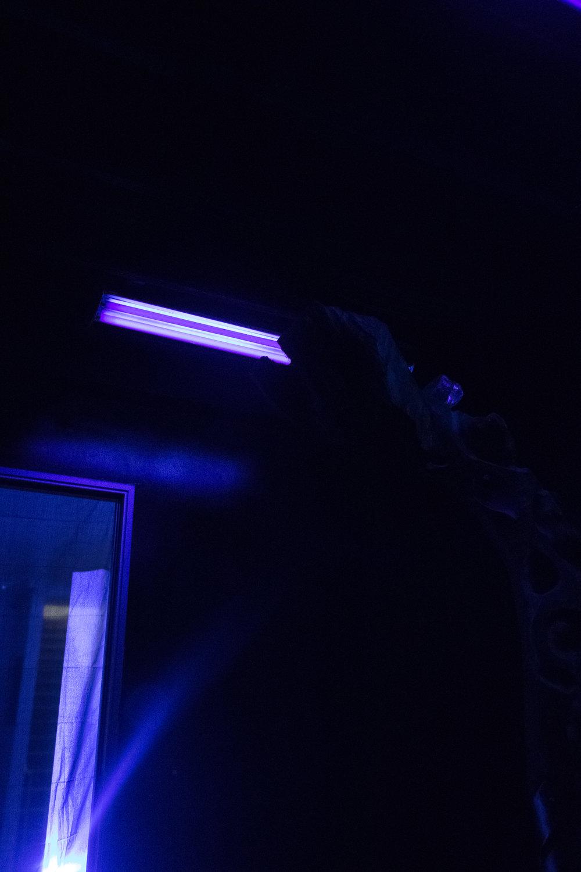Black Light-12.jpg