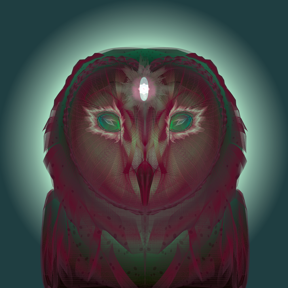 owl-01.png