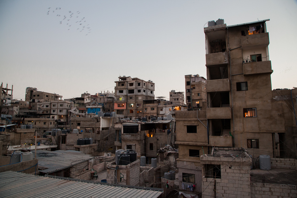A flock of pigeons swoop of the heart of Bourj al-Barajneh at dusk