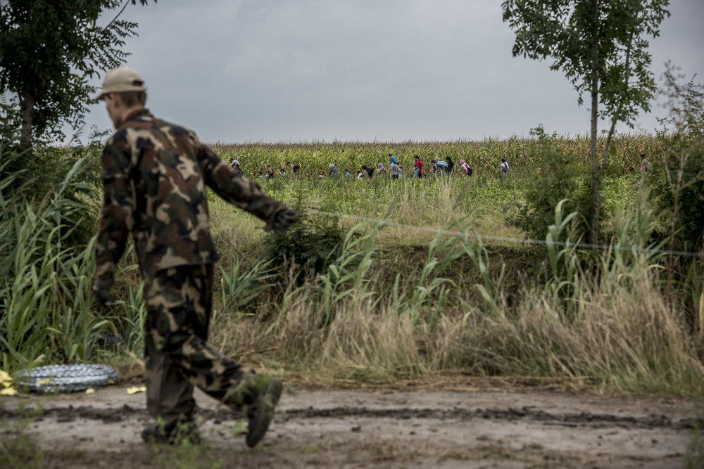 Hungarian soldiers construct a razor-wire fence at the Serbian border as Syrian refugees about to enter the country emerge from the fields behind