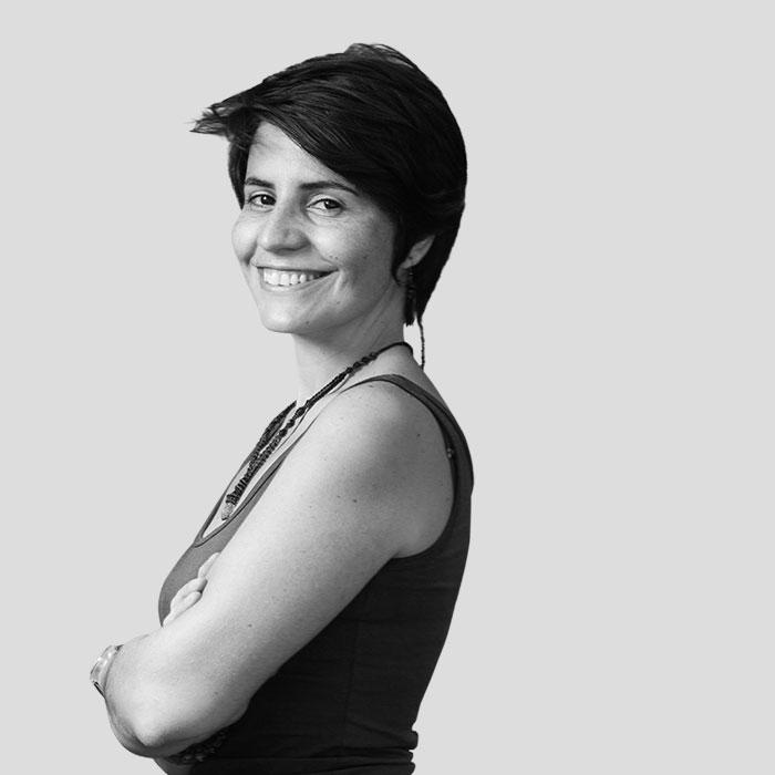 Anita Lucchesi, Historiadora