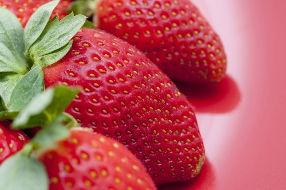 image courtesy of freefoodphotos.com